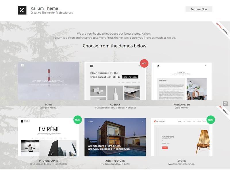 kalium wp portfolio theme
