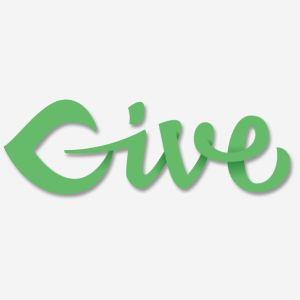 give wordpress plugin