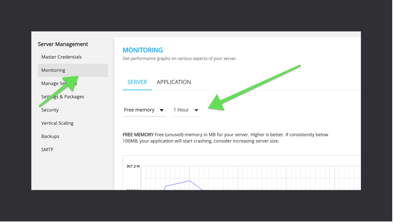 web monitoring cloudways