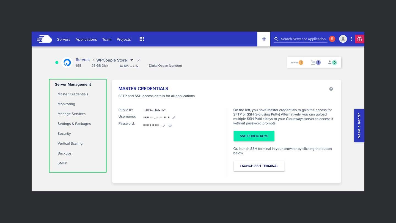 Cloudways Review Server Management