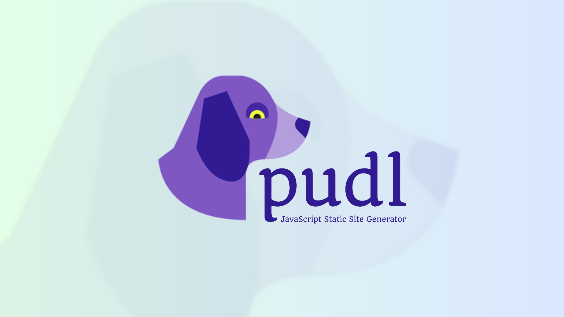Pudl Image